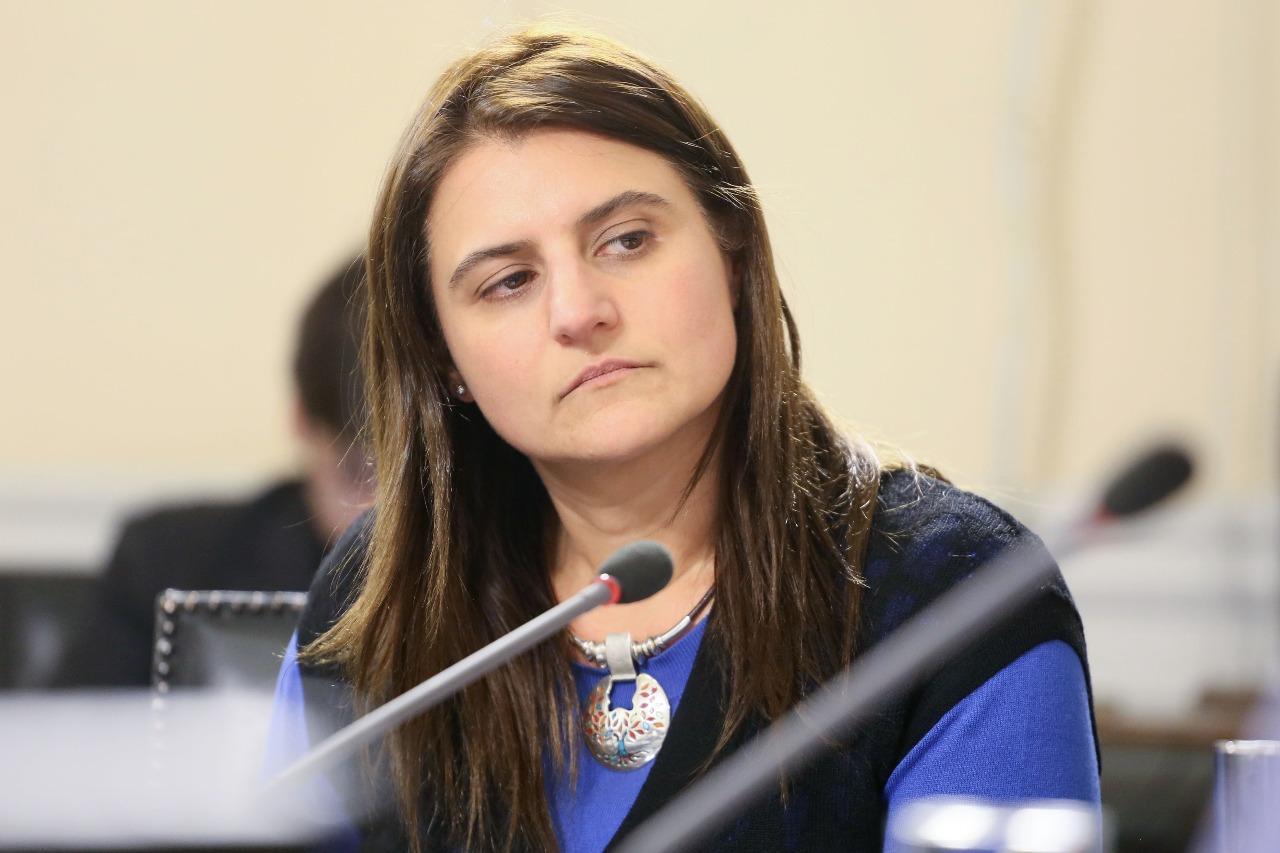 Diputada Cid compromete apoyo a iniciativas legislativas contra la delincuencia