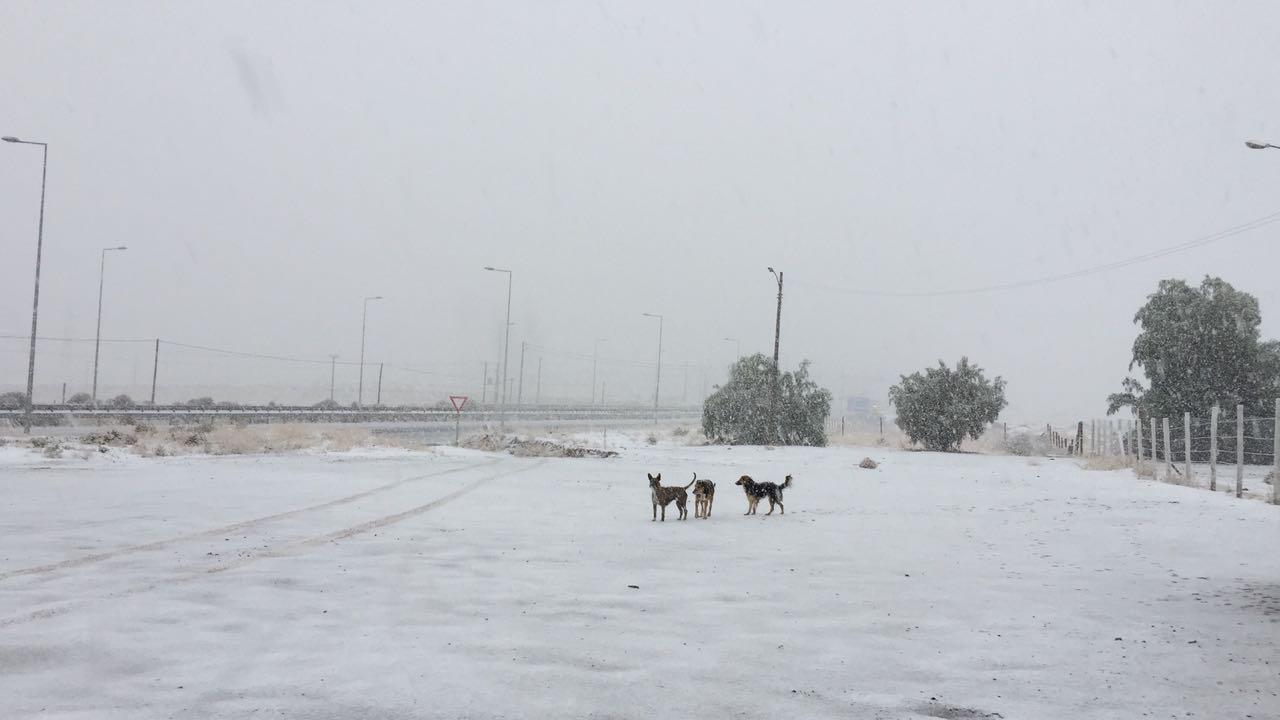 Nieve y granizos deja llegada de frente frío a la provincia del Huasco (Video)