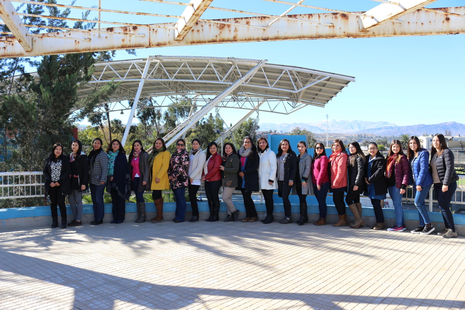 Grupo de coordinación Programa de Integración Escolar de Vallenar se reunieron por última vez