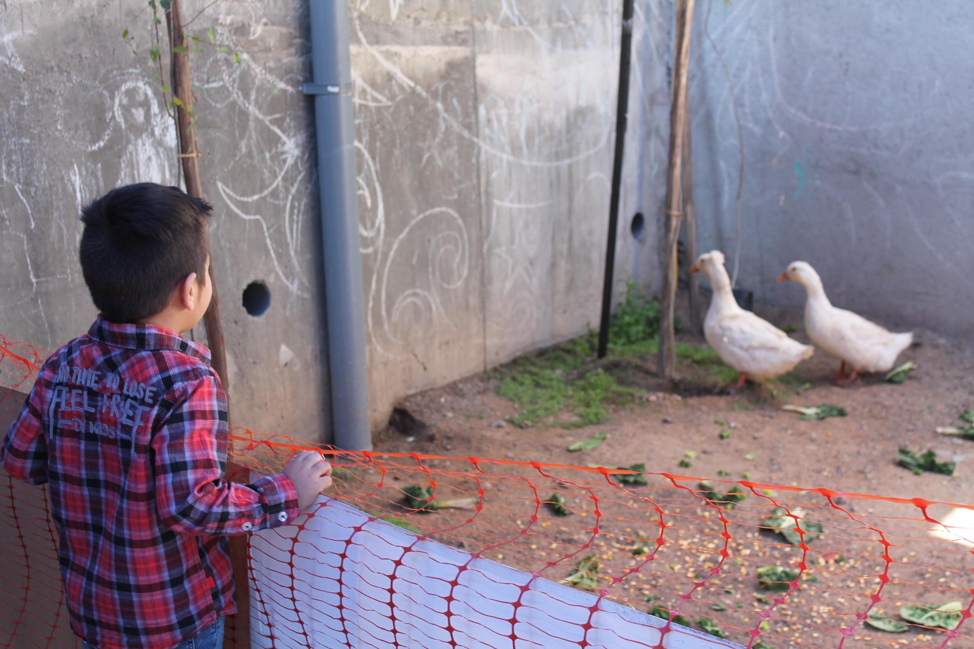Niños vivieron la experiencia de una granja educativa en Vallenar