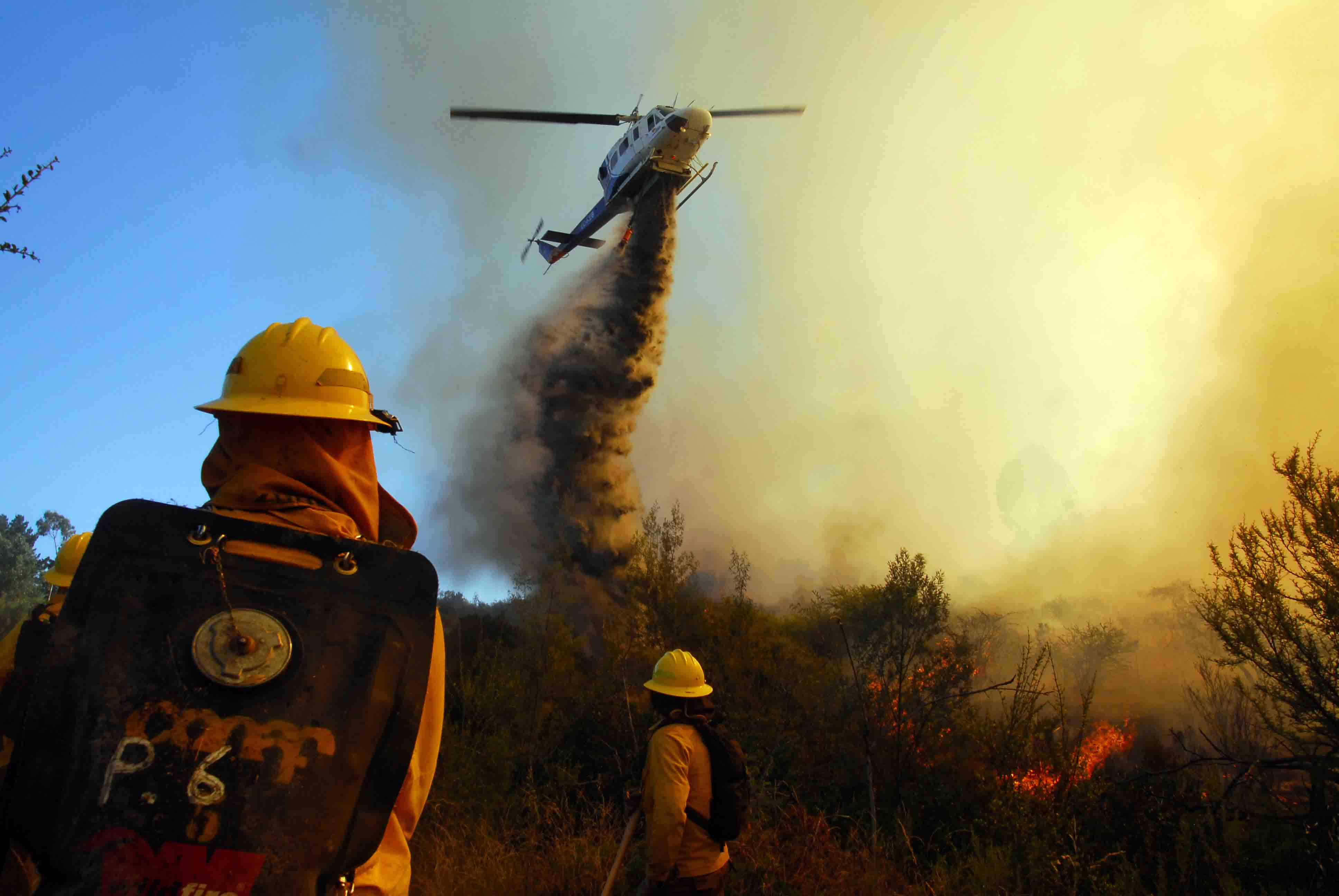 Atacama tiene peligro de incendios forestales hasta el 28 de este mes