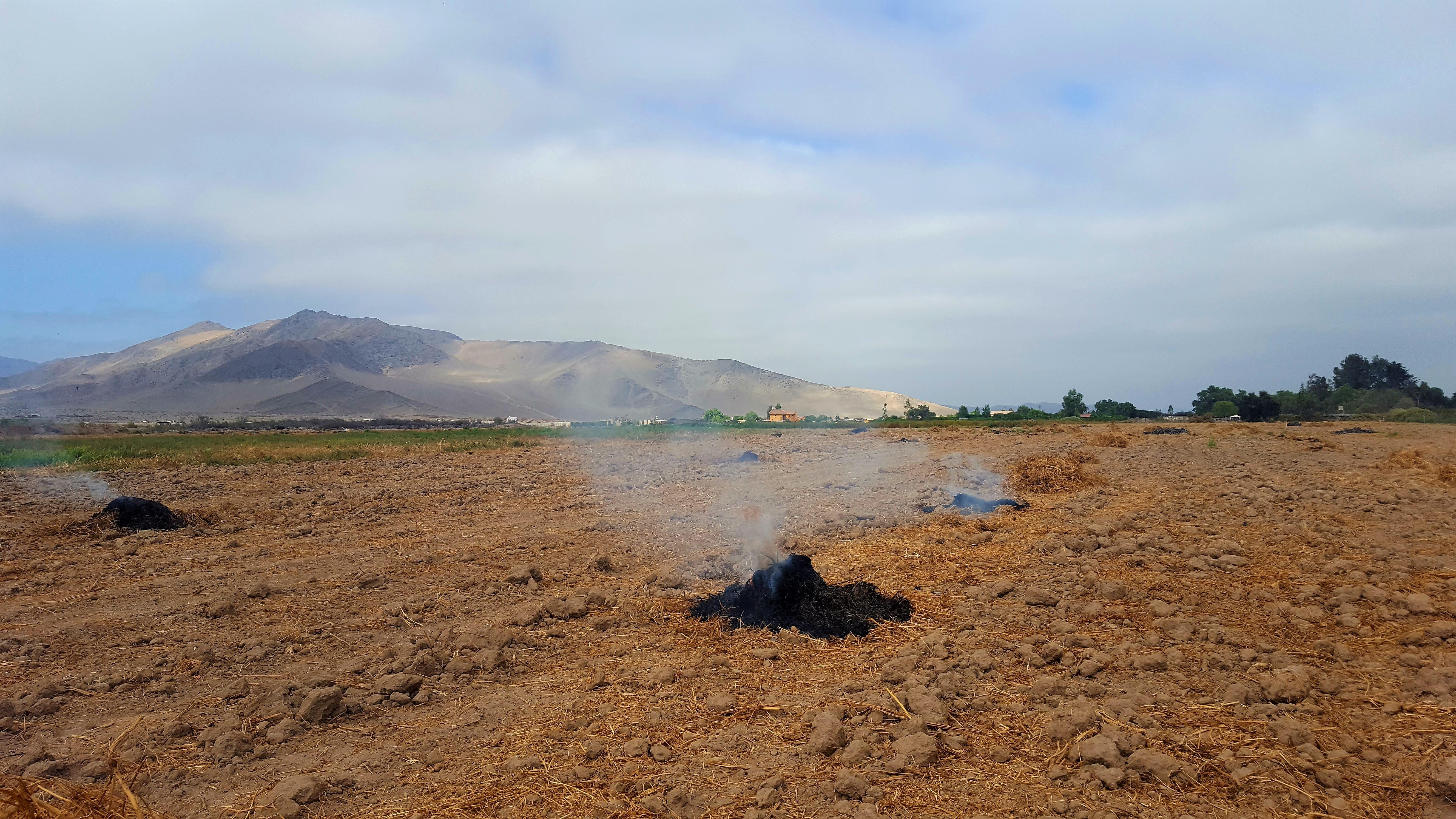 Prohibidas las quemas controladas en la región de Atacama por alto riesgo de incendios forestales