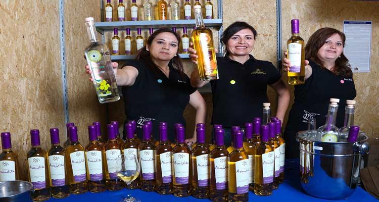 Primeras Mujeres destiladoras de Chile son de Atacama