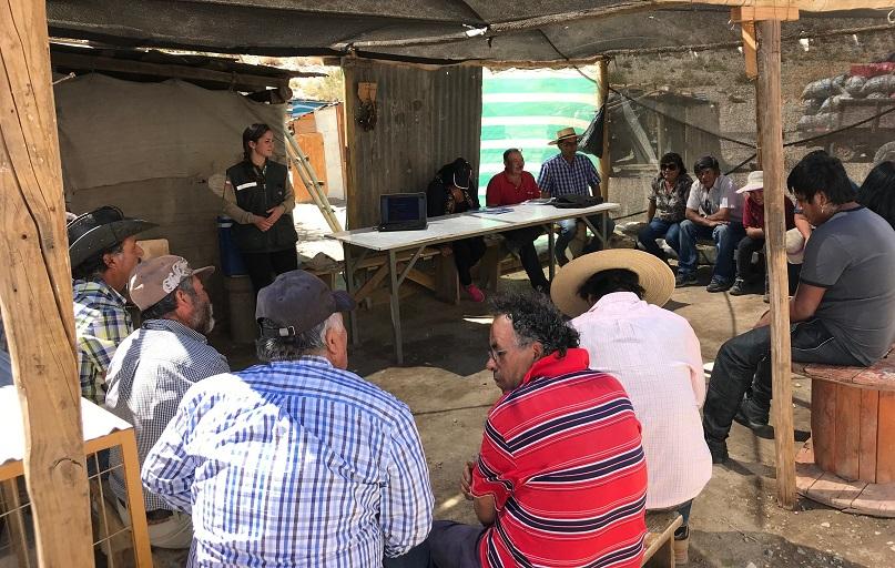 SAG realiza charla ante denuncias por sospechas de ataques de pumas a ganado menor