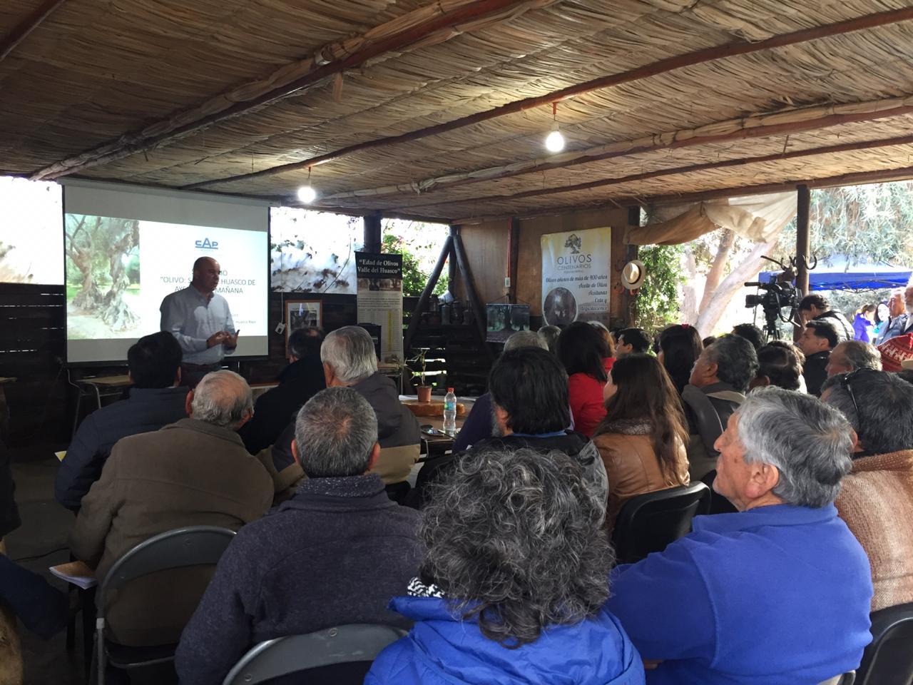 CAP Minería realiza seminario y lanza manual sobre manejo del olivo