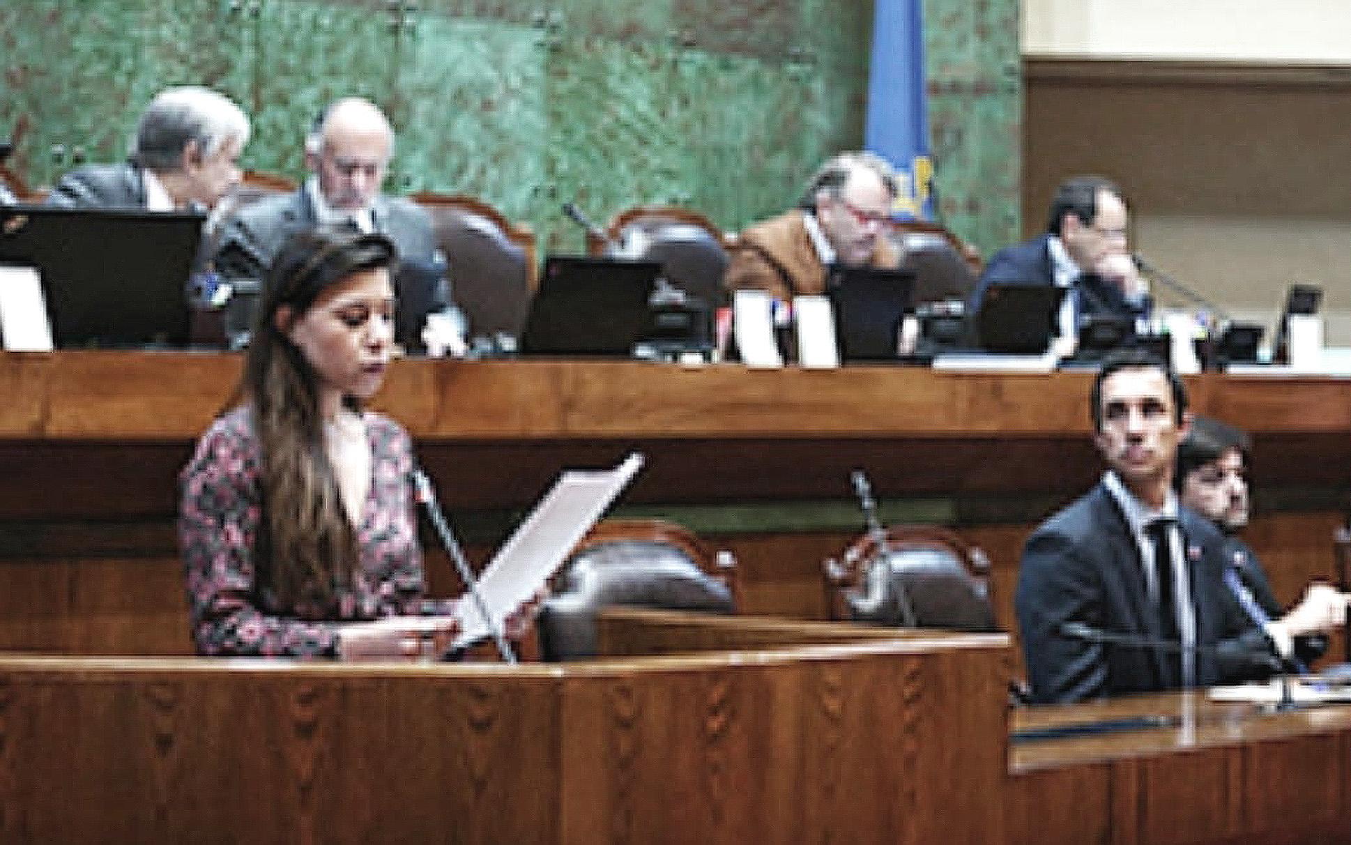 """Diputada Cicardini: """"No nos gusta el proyecto del gobierno pero había que detener el alza de la luz de casi 10 % para Atacama"""""""