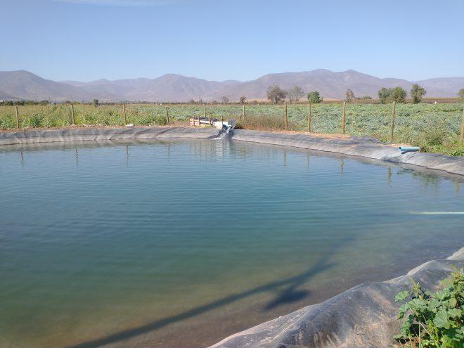 Regantes del Norte Chico disponen de $950 millones en concurso de la Ley de Riego que fomenta obras de acumulación e infiltración