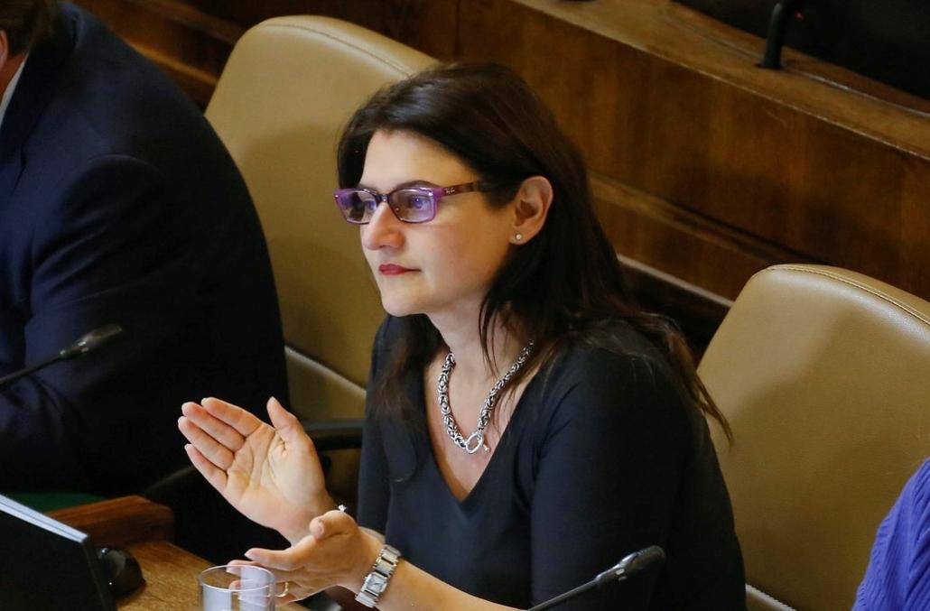 Diputada Sofía Cid destacó promulgación de Ley que sanciona a quienes conducen y usan su celular al mismo tiempo.