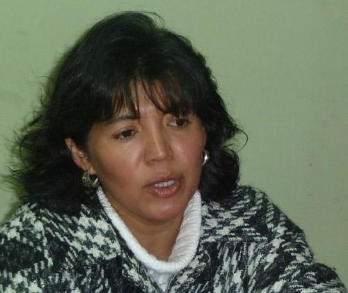 Diputada Provoste (DC) valora indicaciones del Gobierno para que CFT e IP sean sin fines de lucro