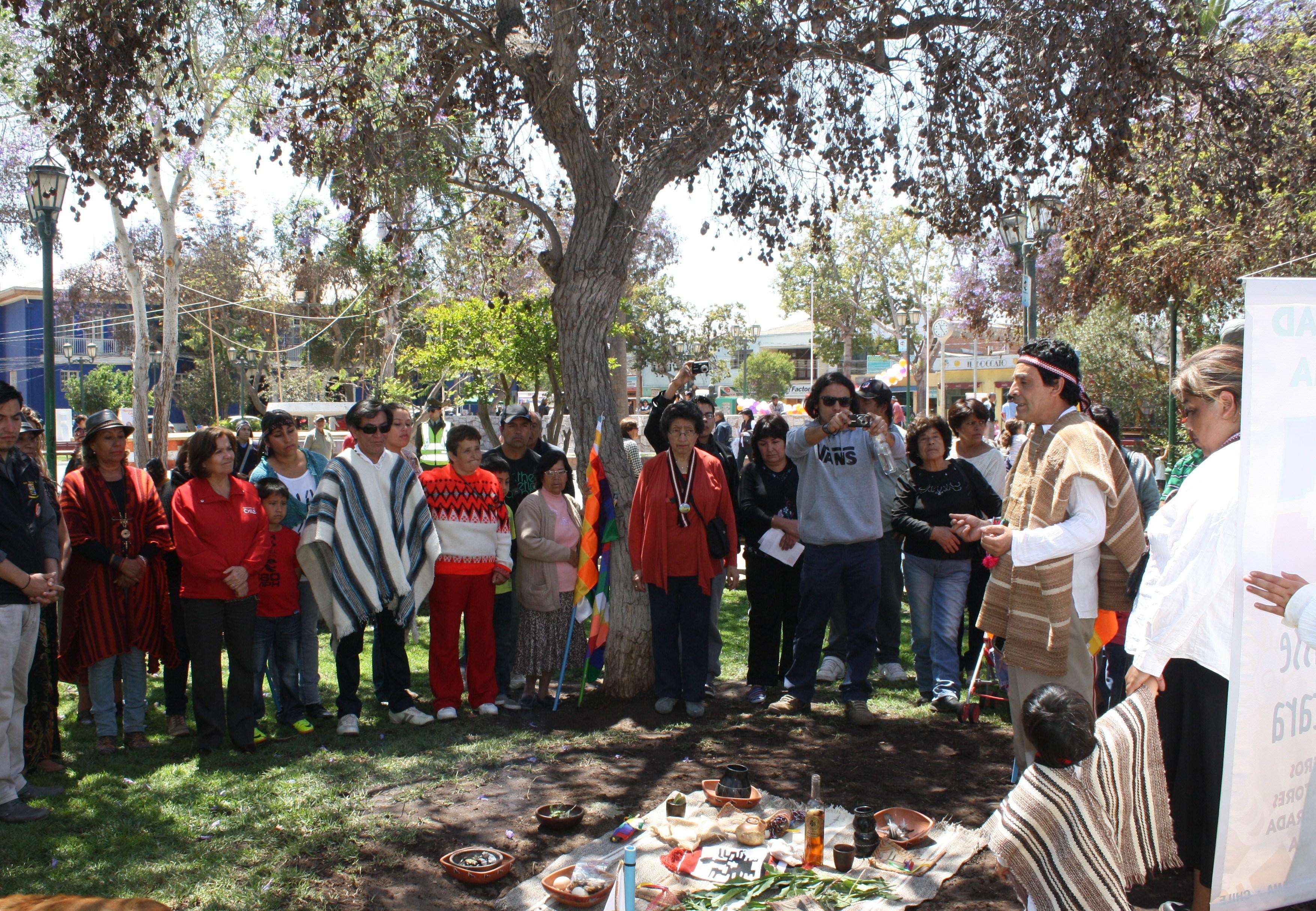 Pueblo diaguita presenta demandas programáticas en hecho histórico en el valle del Huasco