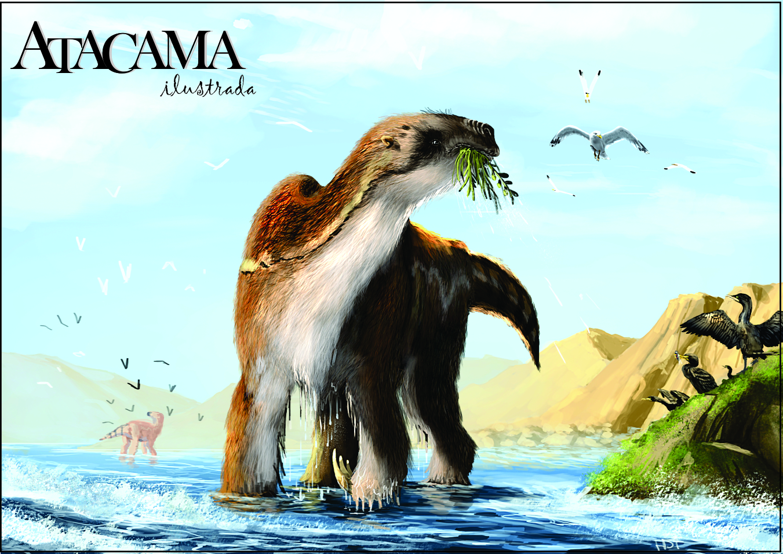 Atacama ilustrada, el primer Álbum que recopila los animales prehistóricos de Atacama