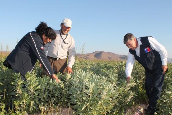 Autoridades destacan importancia del gabinete agrícola en la provincia de Huasco