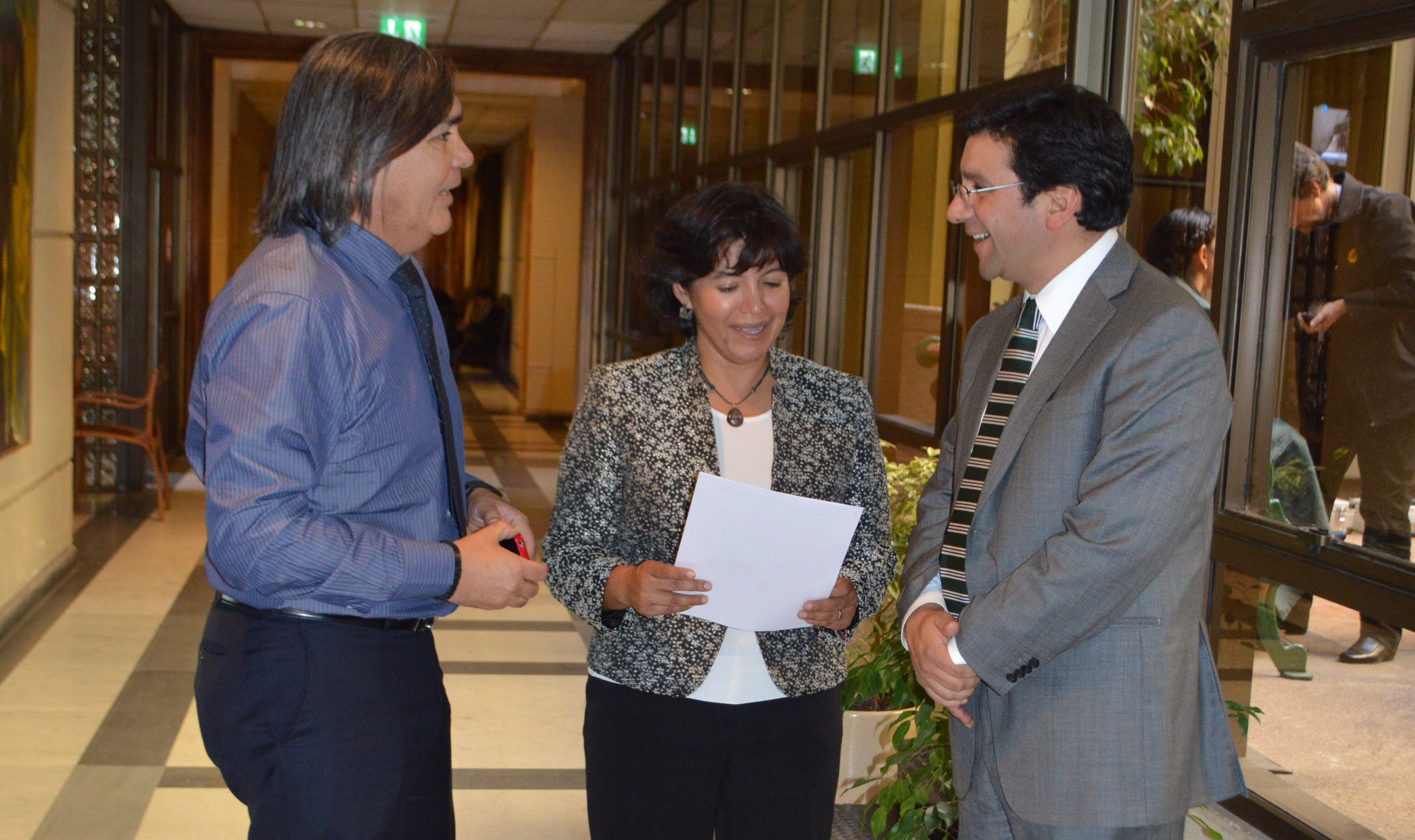 Provoste y Punta Alcalde: Decepcionada por determinación de Consejo de Ministros