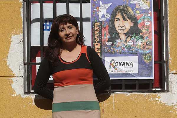 """Roxana Miranda y rol del Gobierno en proyectos ambientales de Atacama: """"Actúan como delincuentes"""""""