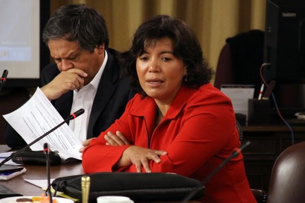 """Provoste: """"Nosotros somos parte de la Nueva Mayoría y el candidato es Cristián Tapia"""""""