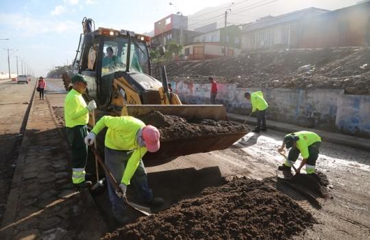 Tasa de Desocupación se ubica 11,6% en Atacama