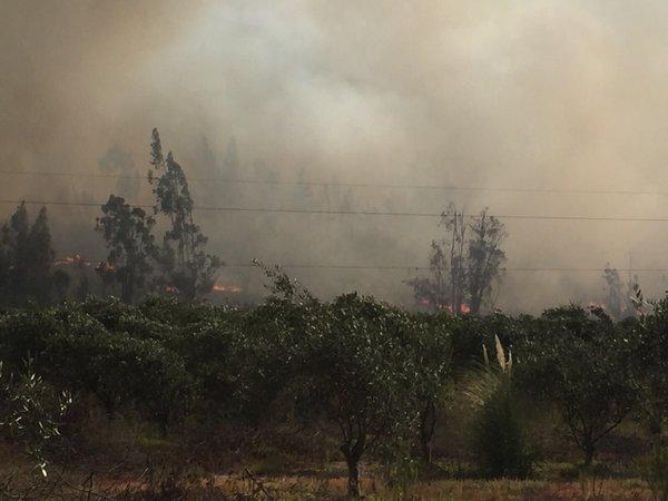 Las complejas situaciones de seguridad de la provincia ante alguna catástrofe natural