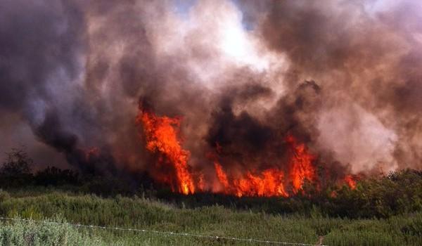 Evacuaron a 40 personas desde sector de incendio en camino a Hacienda Ventanas