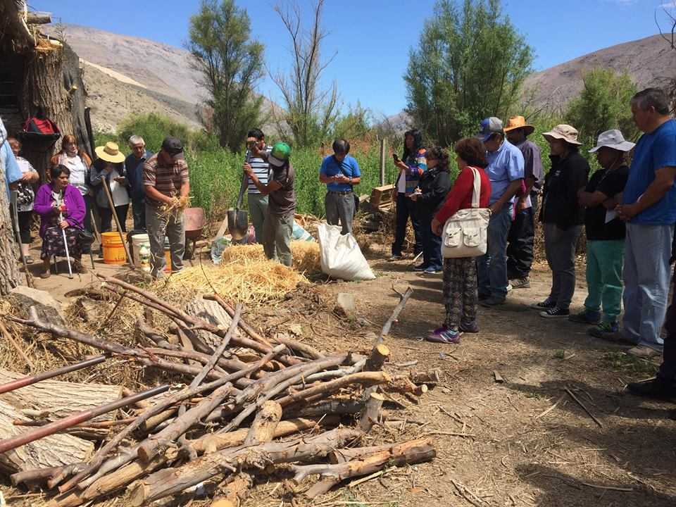 AGRICULTORES APUESTAN POR AGRICULTURA ORGANICA EN ALTO DEL CARMEN