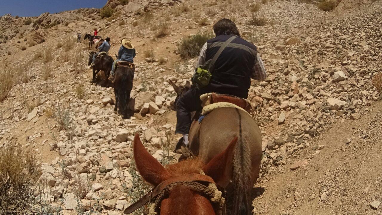 A caballo funcionarios de INDAP continúan catastrando lugares aislados por aluvión en Alto del Carmen