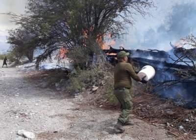 Importante colaboración de carabineros en extinguir incendio de pastizales en el valle El Tránsito