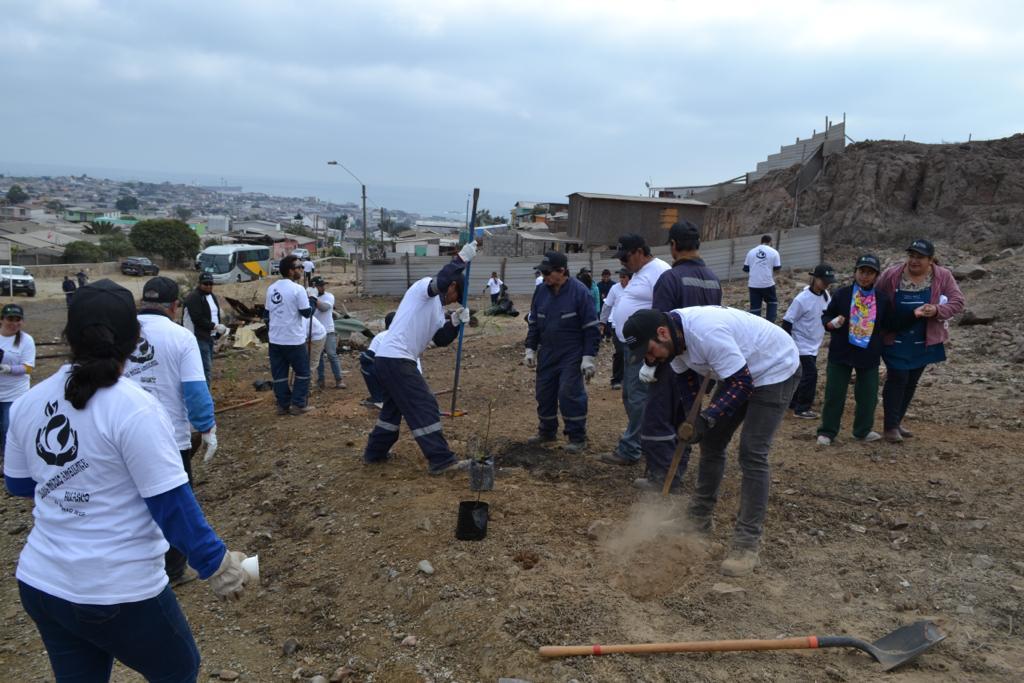 Trabajadores de Guacolda recuperan sitio eriazo en Huasco