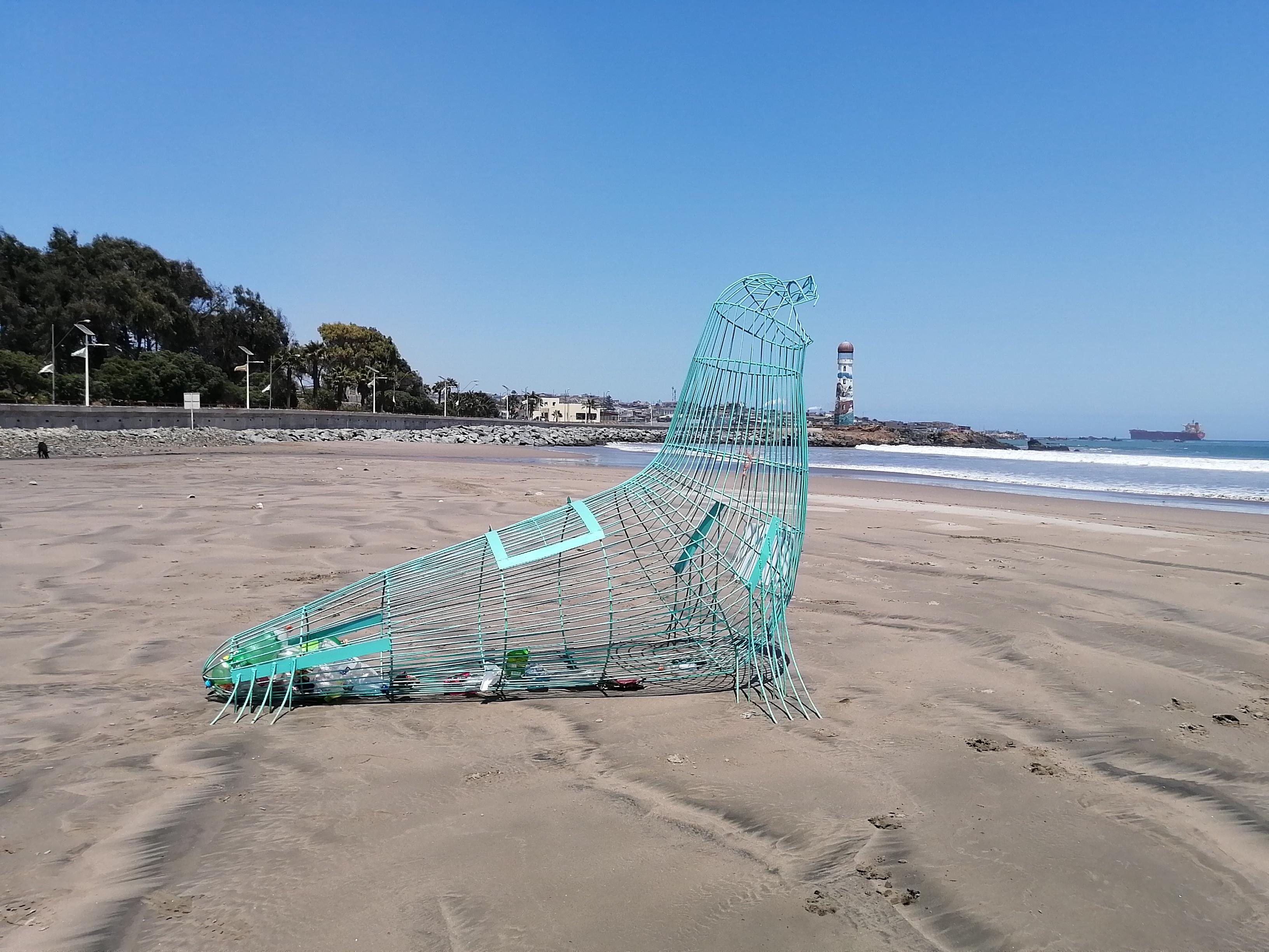 Con lobos y peces gigantes huasquinos recolectarán plástico en las playas de la comuna