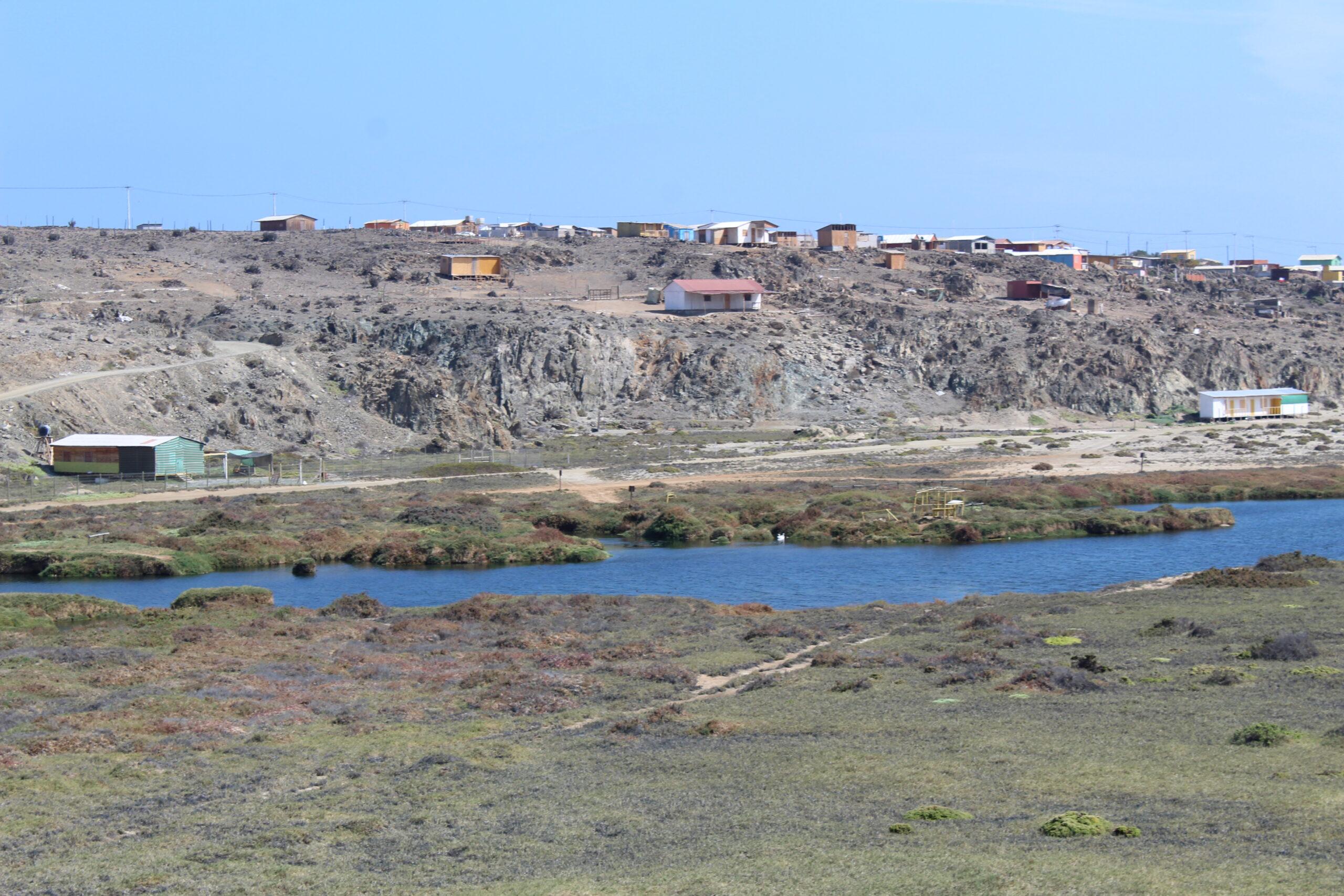 Realizan taller de conservación de humedales costeros y aves playeras de Atacama