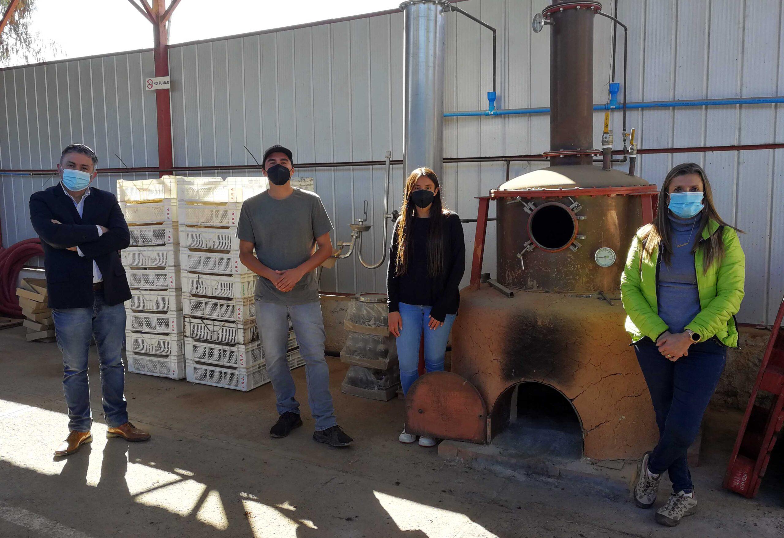 Los productores del Valle del Huasco que apuntan a la identidad en la industria del vino