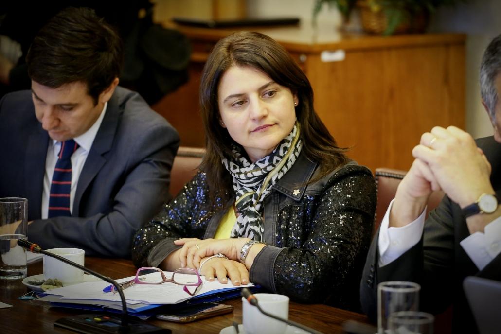 Diputada Sofía Cid destacó promulgación del Bono Alivio para las micro y pequeñas empresas