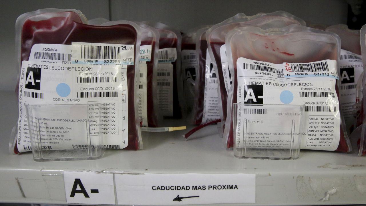Corte autoriza a hospital realizar transfusión de sangre a paciente Testigo de Jehová