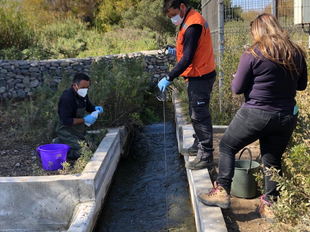 Junta de Vigilancia del Río Huasco realiza monitoreo de calidad del agua