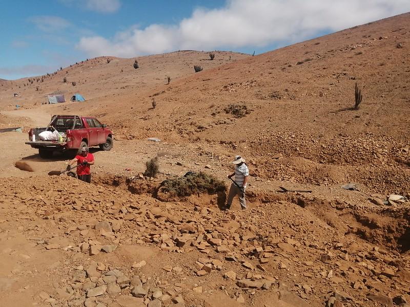 CORES de Atacama evalúan apoyo a crianceros y emprendedores