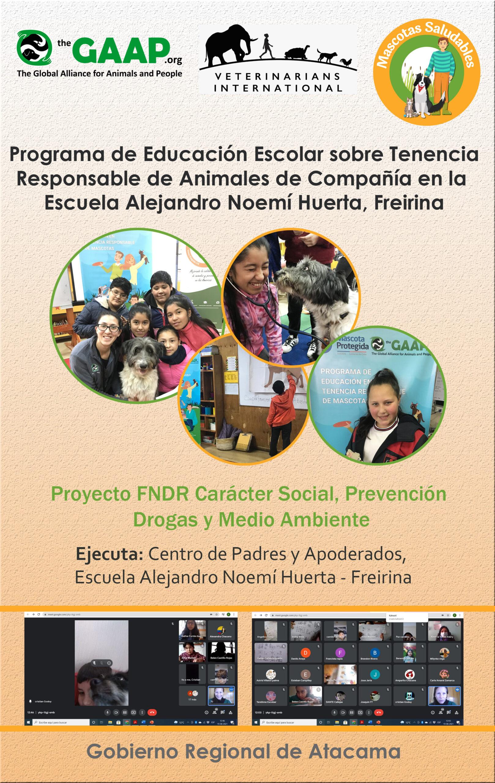 Habilidades para la vida desde la escuela: La Tenencia Responsable de Animales desde la óptica pedagógica