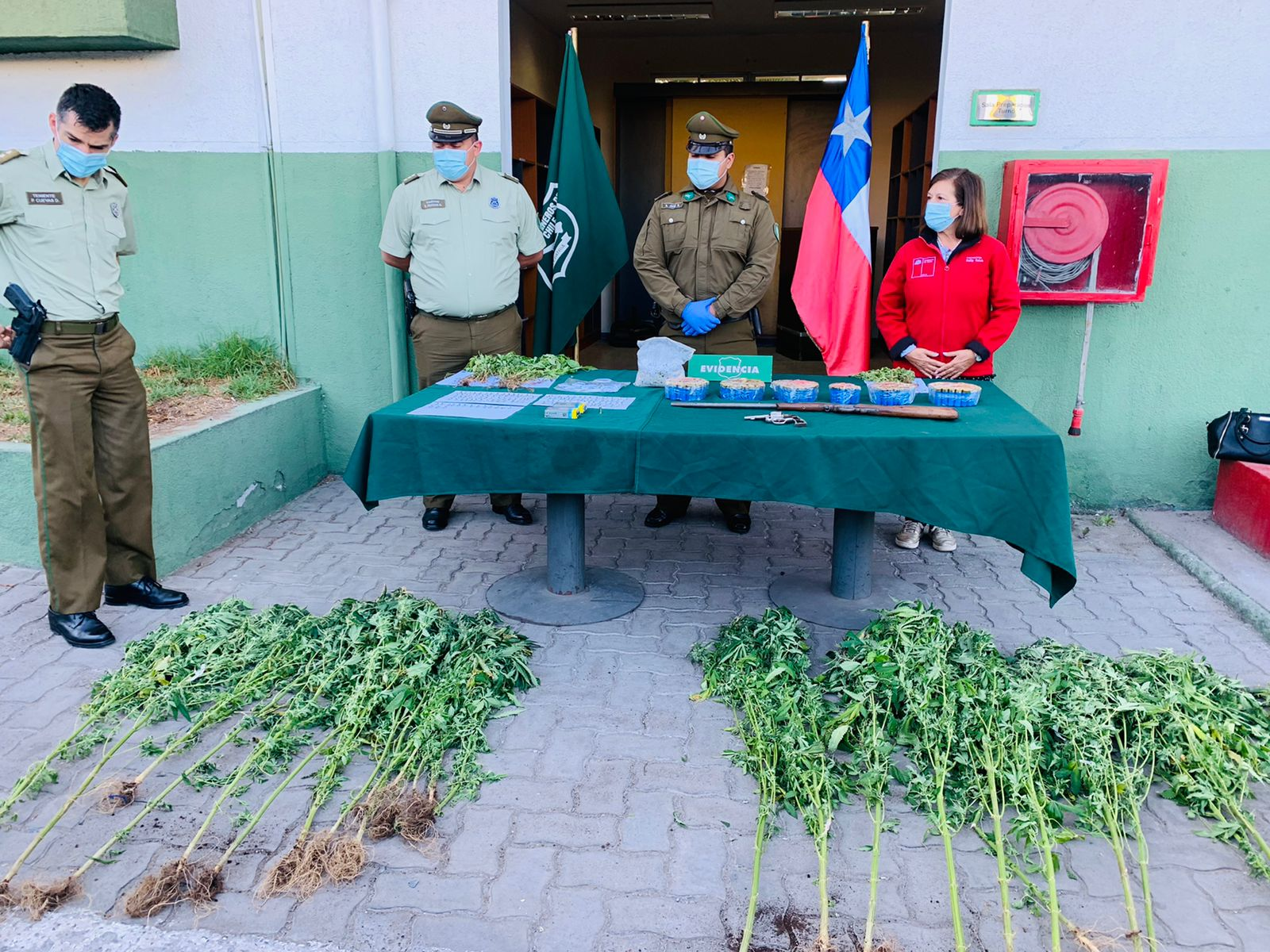Allanamiento dejó al descubierto cultivo indoor y gran cantidad de armas y municiones