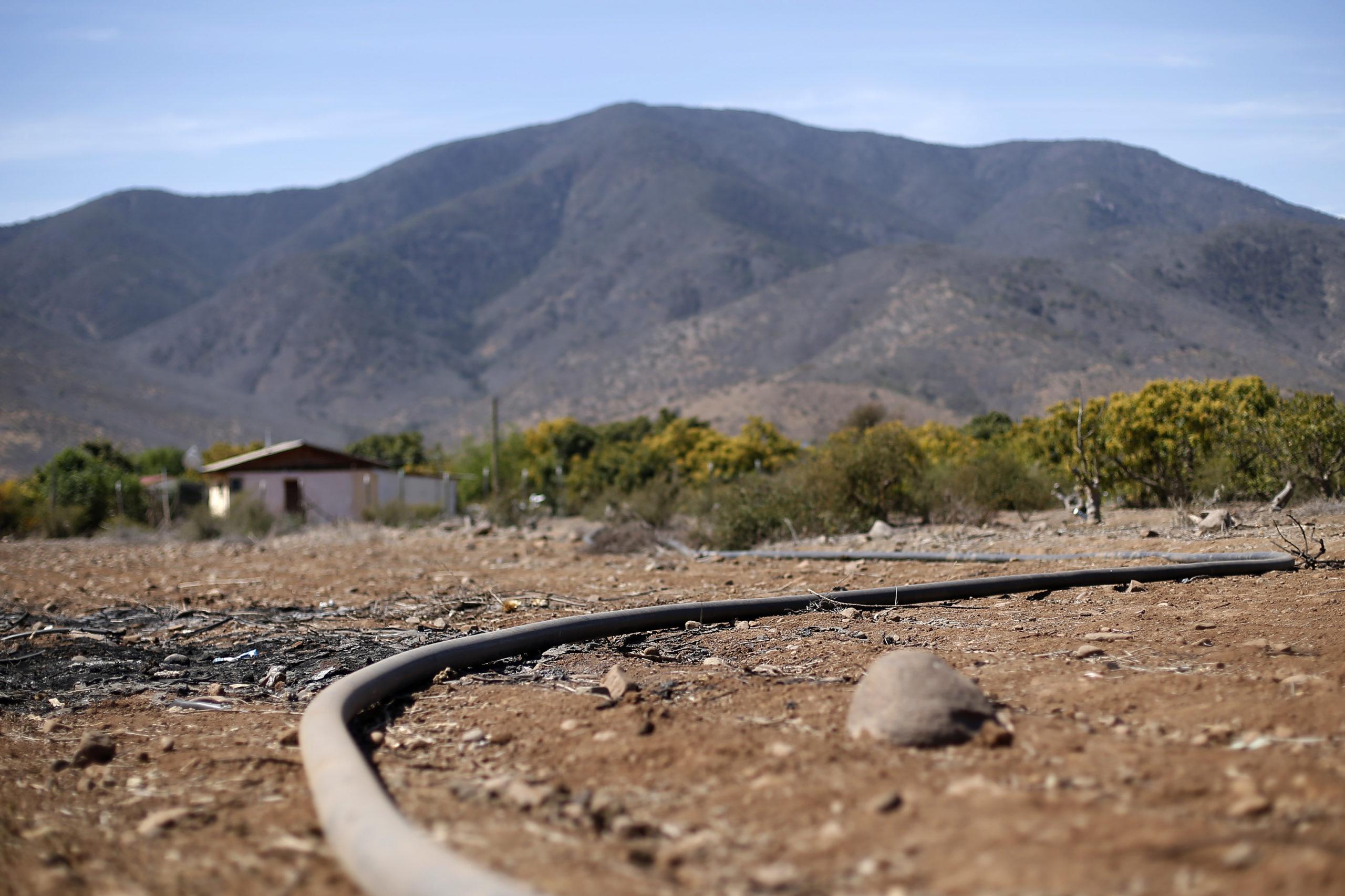 Ministerio de Agricultura evalúa decretar emergencia agrícola por escasez hídrica en varias regiones