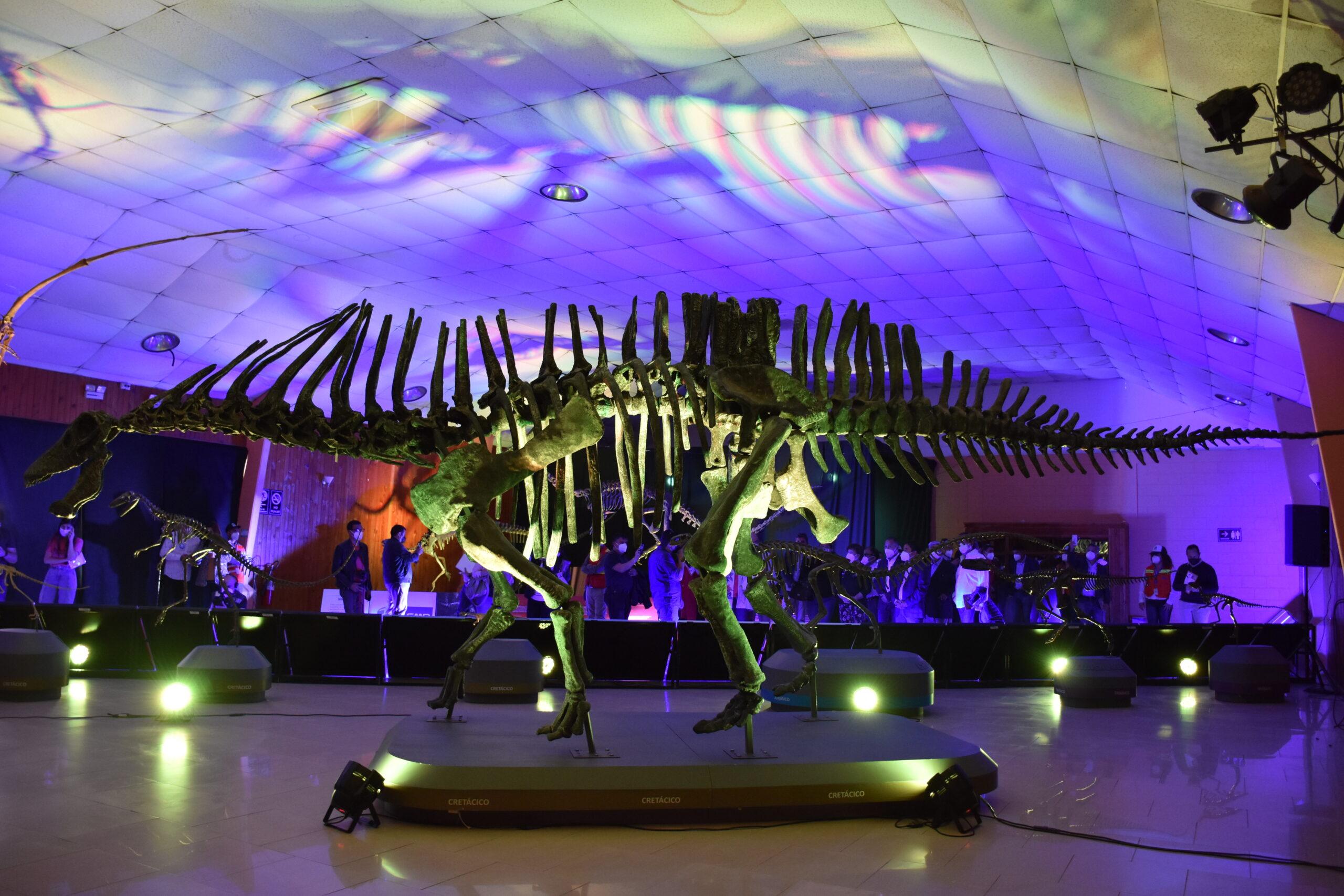 Llega a Vallenar la muestra de dinosaurios más grande y diversa en su clase